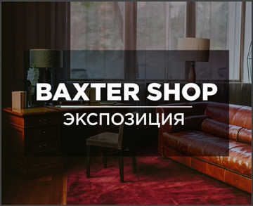 """Цвета Салона """"Baxter shop"""" в интерьере"""